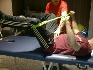 12 Dynamic Neuromuscular Stabilization Course A Workshop 1 - Enhance Physiotherapy